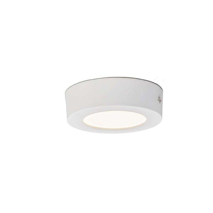 Plafón-PLATE-6W-LED-redondo-blanco