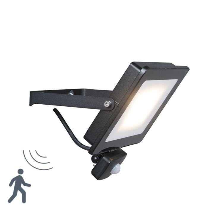 Emisor-LED-negro-con-LED-30W-con-detector-de-movimiento---Radio-1