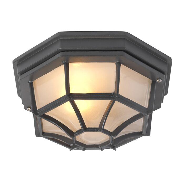 Lámpara-de-techo-rústica-gris-oscuro-IP44---BRI-L