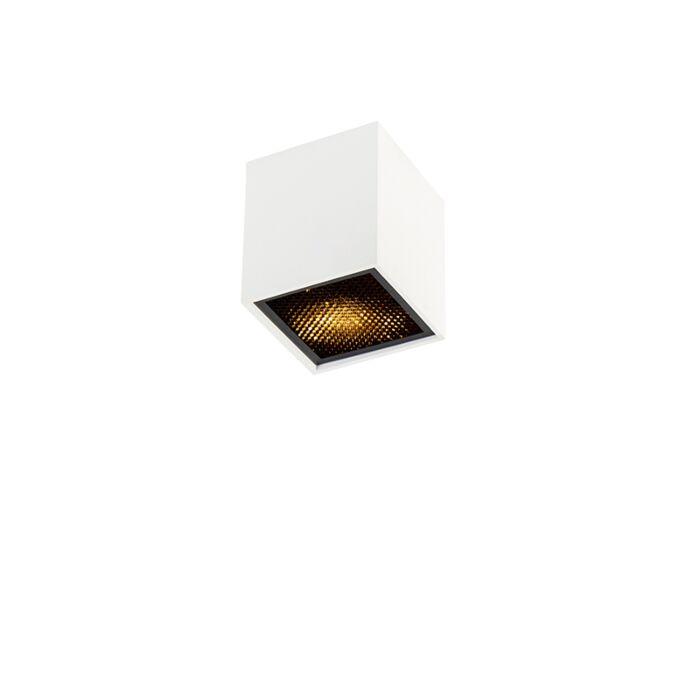 Foco-diseño-blanco---QUBO-Honey