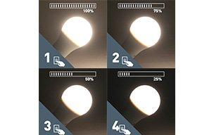Regular LED en 4 pasos