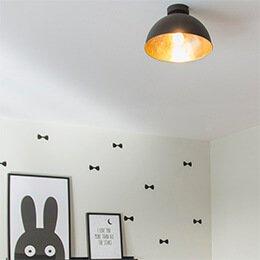 Lamparayluz - ¿Quieres instalar un plafón?